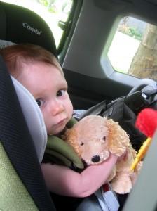 Child Car Seat Regulations